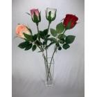 Róża pojedyncza kolor 4